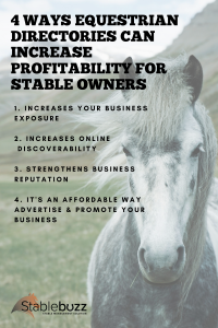 Equestrian Directory profit equine business