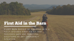 First Aid Horse Barn Stable Management