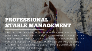Professional Stable Management