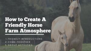 Horse Farm Atmosphere