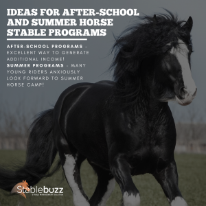 horse stable programs
