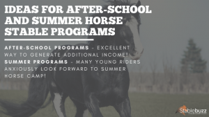 after school summer horse camp stable