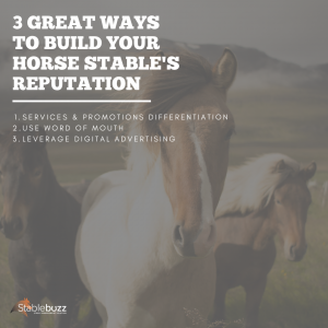 build reputation horse stable