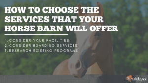 Horse Barn Services horse boarding