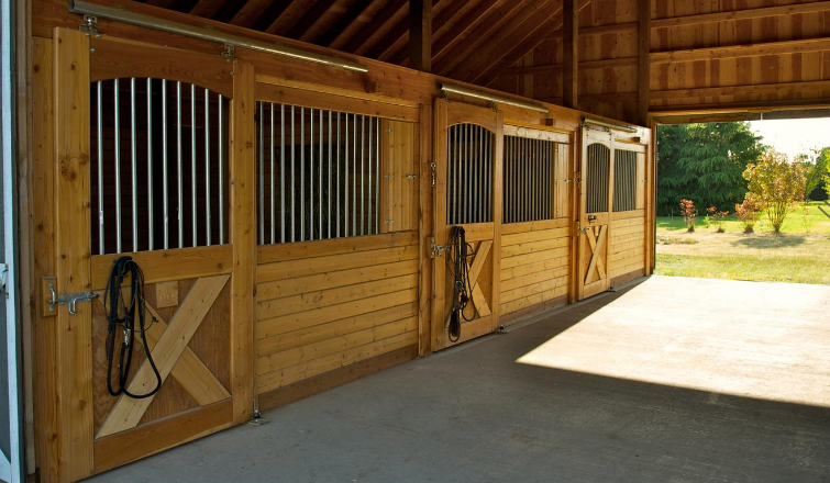 mistakes to avoid horse stable boarding