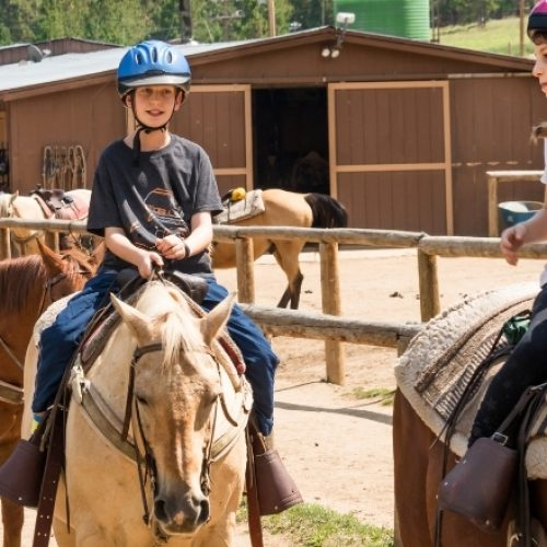 Hosting Clinics at Your Horse Stable