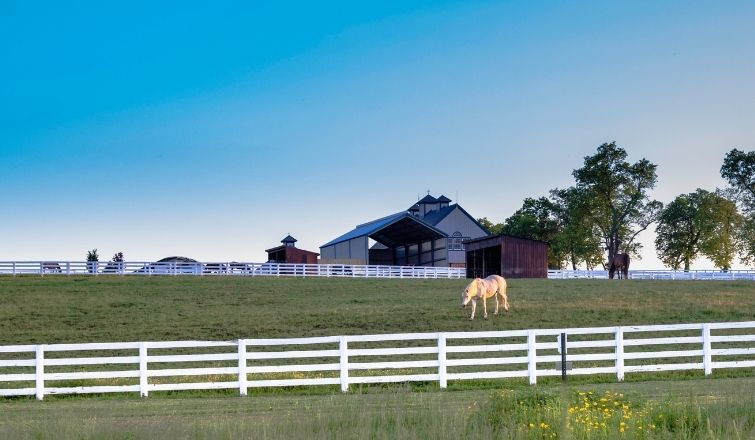 Buying vs building a horse farm