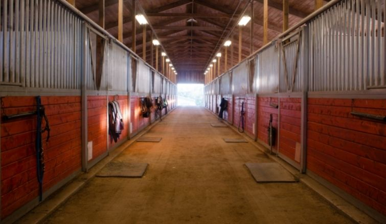 Preventing Fires in Your Horse Stable